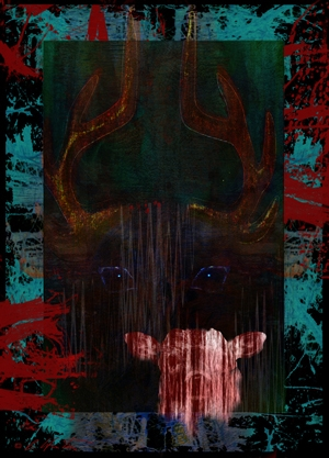 Deer Messenger 2-Totem (Awakening Series) by Alyssa Hinton