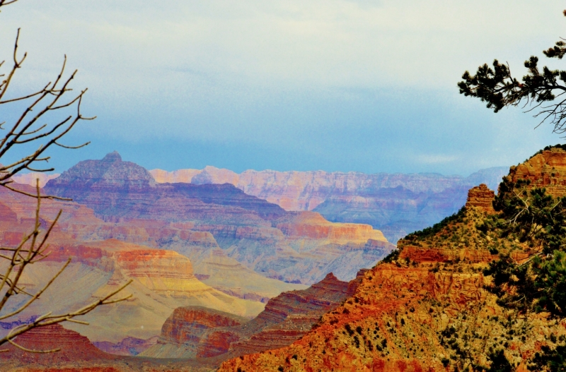 Grand Canyon 5 by Mattie Mallernee