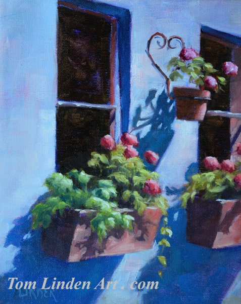 Flower Boxes by Tom Linden