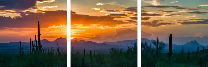 Painted Sunset From Saguaro National Park by A O Tucker