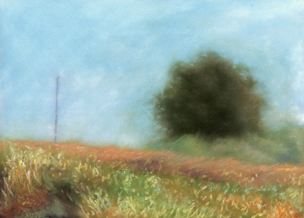 Fog and Pole by jeffrey s thornton