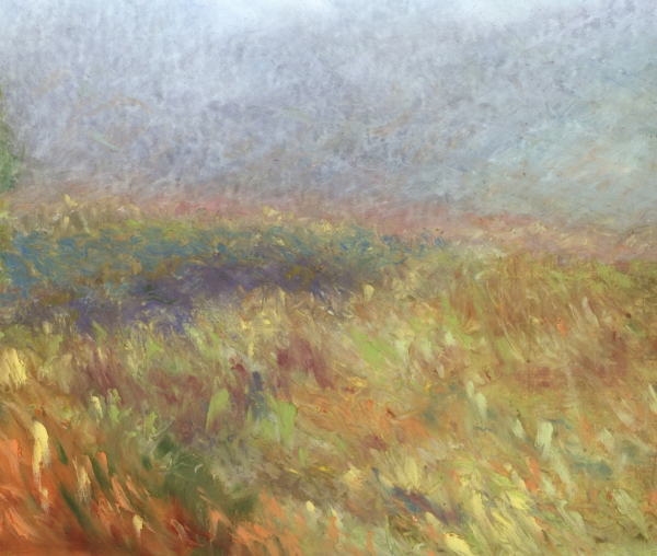 Prairie Grass in Fall with Fog by jeffrey s thornton