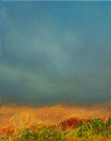Fog on the Prairie by jeffrey s thornton