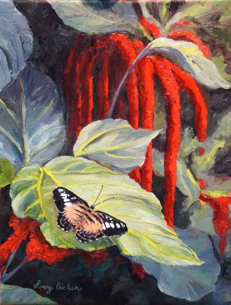 Butterfly Sanctuary by Lucy Dickens