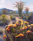 Sonoran Rainbow by Lucy Dickens
