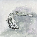 Flying Into The Snow by Pamela Morgan