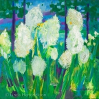 Bear Grass III by Linda Hendrickson
