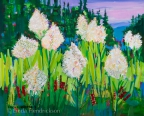 Beargrass in Alpenglow by Linda Hendrickson