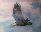 Rainbow Eagle by Nancy Calcutt
