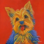 Lola the Yorkshire Terrier by Kathy E. Walker