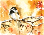 Chickadee by Pamela Morgan