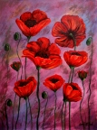 Poppies for Jazz by Janell Mithani