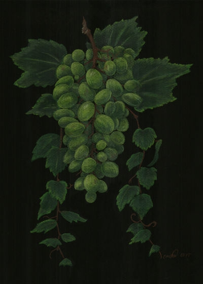 Green Grapes by Cristal Baldwin
