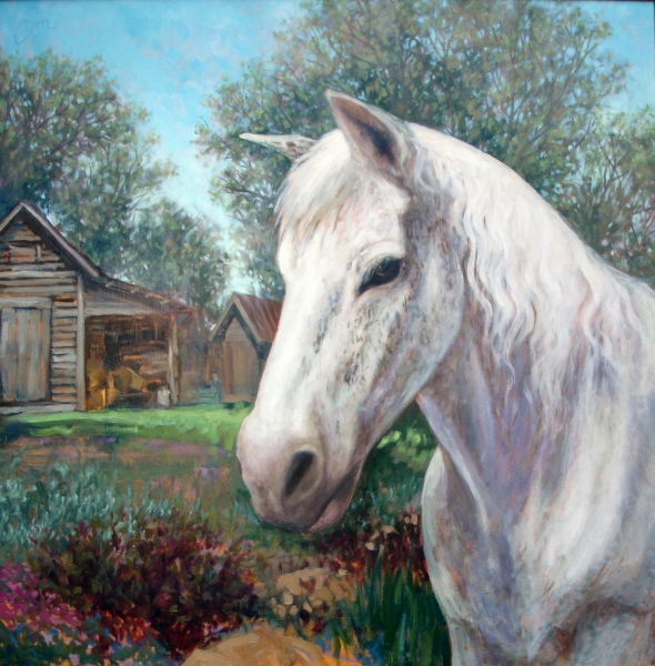 Mandy, the Free-Ranging Horse by Emily Eve Weinstein