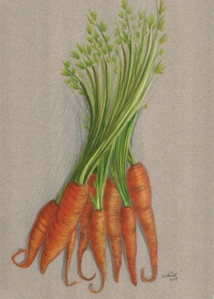 Carrots by Cristal Baldwin