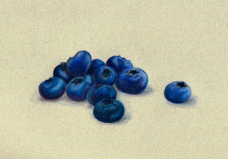 Blueberries by Cristal Baldwin
