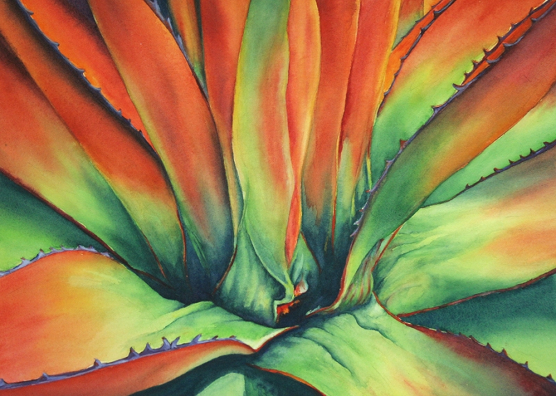Agave by Glenyse Henschel