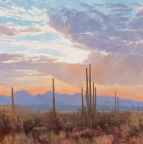 Arizona by John Horejs