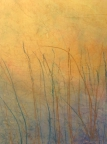 Pond at Dawn by Linda Snouffer,Botanical Printmaker