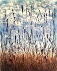 Alley Grass by Linda Snouffer,Botanical Printmaker