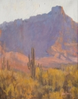 Saguaros in Evening Light by John Horejs