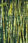 Bamboo Forest by Glenyse Henschel